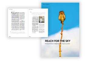 """Cover des E-Papers """"Reach for the sky"""". Eine Sonnenblume, die in den Himmel hineinwächst."""